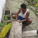 Nabaheng Aan de slag met planten